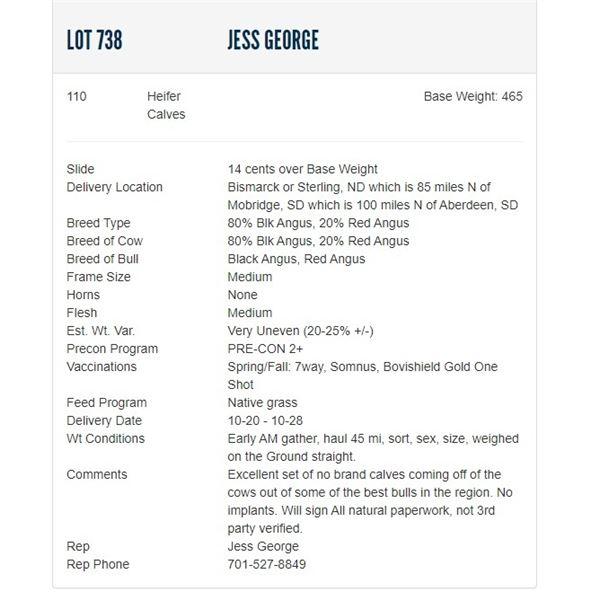 Jess George - 110 Heifers; Base Weight: 465