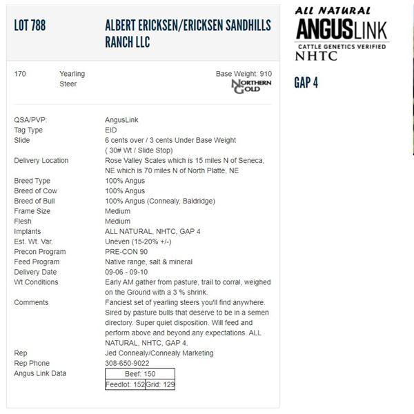 Albert Ericksen/Ericksen Sandhills Ranch LLC - 170 Steers; Base Weight: 910