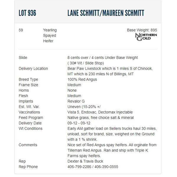 Lane Schmitt/Maureen Schmitt - 59 Spayed Heifers; Base Weight: 895