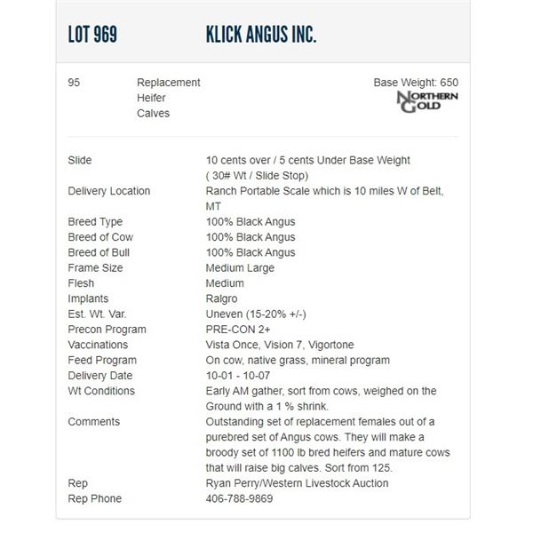 Klick Angus Inc. - 95 Replacement Heifers; Base Weight: 650