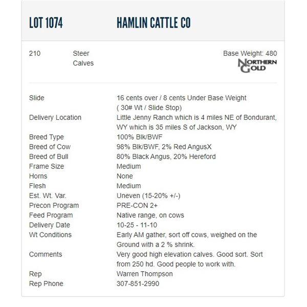 Hamlin Cattle Co - 210 Steers; Base Weight: 480