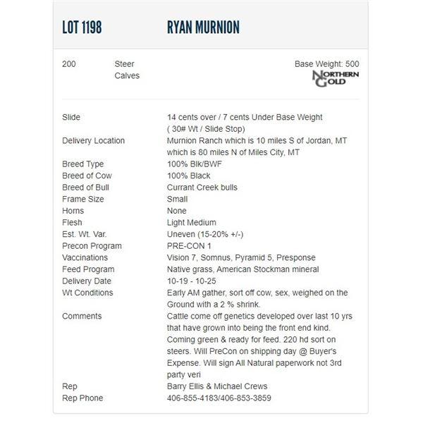 Ryan Murnion - 200 Steers; Base Weight: 500