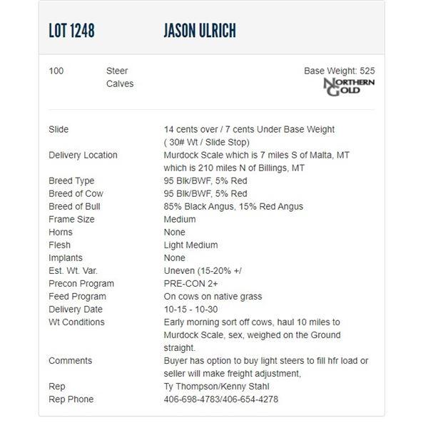 Jason Ulrich - 100 Steers; Base Weight: 525