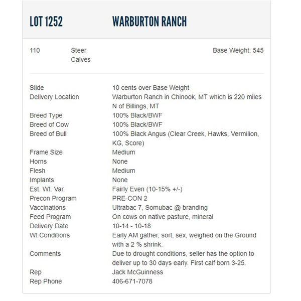 Warburton Ranch - 110 Steers; Base Weight: 545