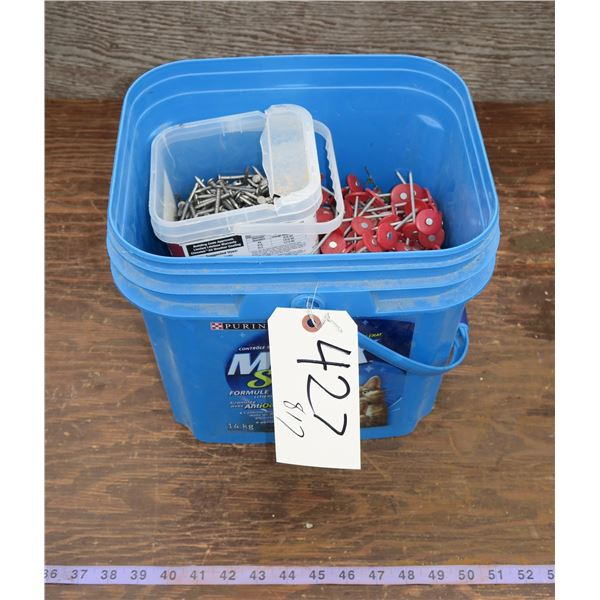 Lot of Nails/Fasteners