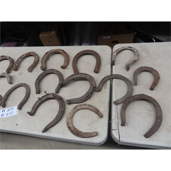 Approx 30 Horse Shoes