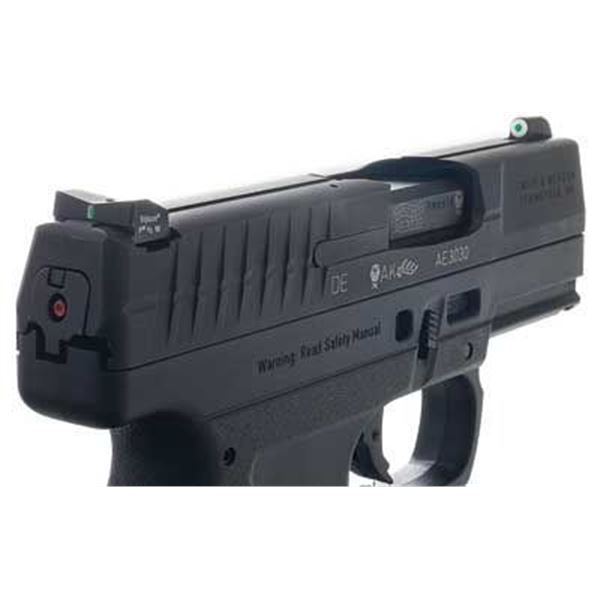 XS DXT BIG DOT WALTHER PPS/PPS M2