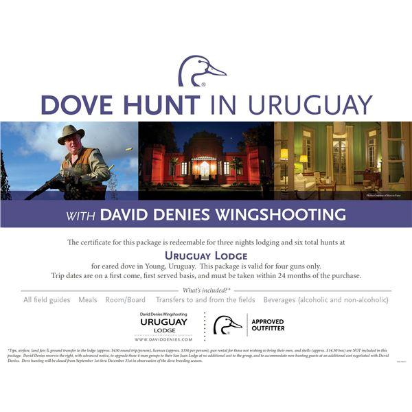 Dove Hunt for 4 in Uruguay- Uruguay Lodge