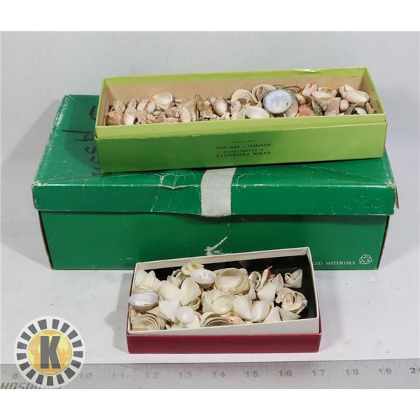 BOXES OF SHELLS