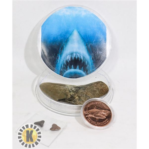 FOSSILIZED MEGALODON TEETH & 1OZ COPPER ROUND
