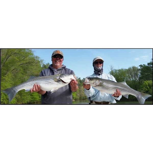 Four-Hour Striper Fishing Trip for Four People with The Striper Experience