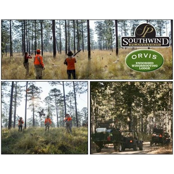 Half-Day Quail Hunt for Four Hunters with Lunch at Orvis-Endorsed SouthWind Plantation