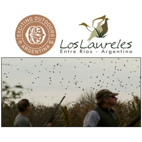 Four-Day High Volume Dove Hunt in Argentina for Four People