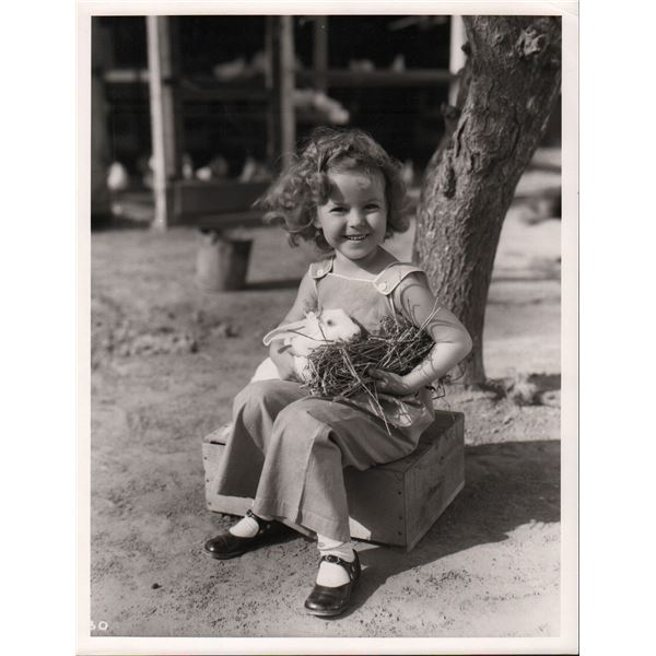 Shirley Temple Vintage 11x14 Photo