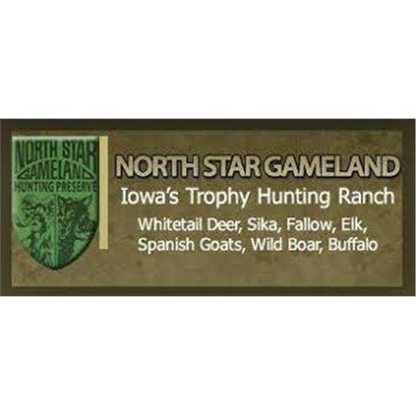 Iowa Boar Hunt with North Star Gameland