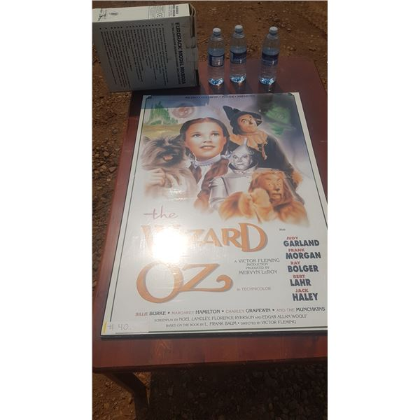 Wizard of Oz Mounted Poster