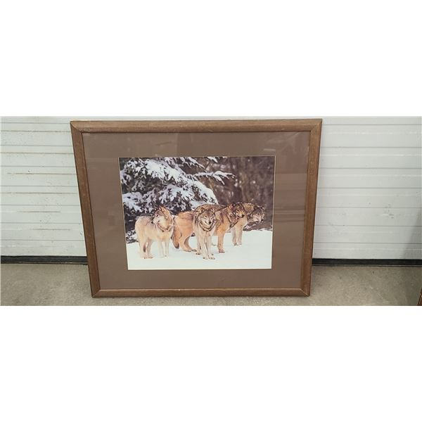 FRAMED WOF PICTURE 30*25