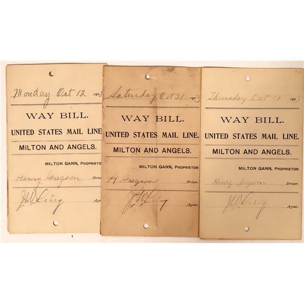 Stagecoach Way Bills United States Mail Line  [132625]