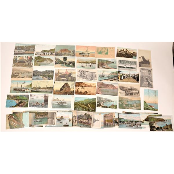 Catalina Island (approx 70 pieces) Post Card Collection  [137978]