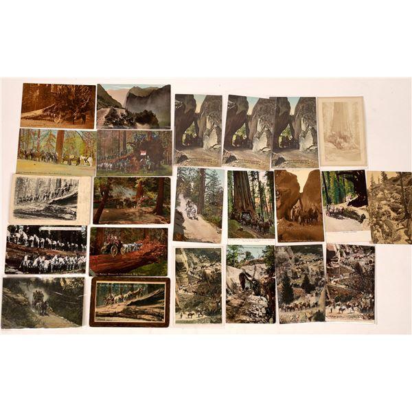 Yosemite Tours on Horseback Postcards (23)  [137924]