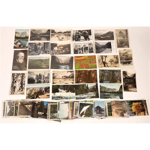 Yosemite Postcard Collection (100+)  [137925]