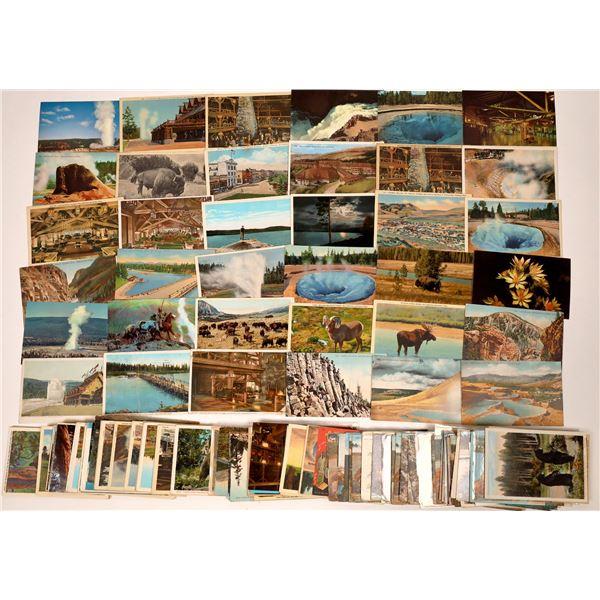 Yellowstone Park Postcards ~ 150  [138807]