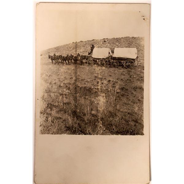 Connestoga Wagon Real Photo Postcard  [135759]