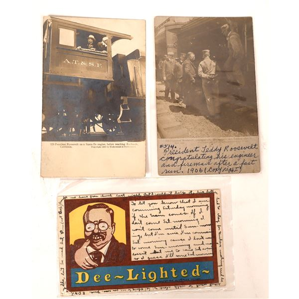 Theodore Roosevelt Postcard Group (3 cards)  [138121]