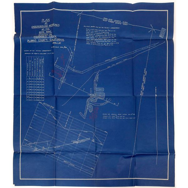 Rose Mine Blueprint  [137609]