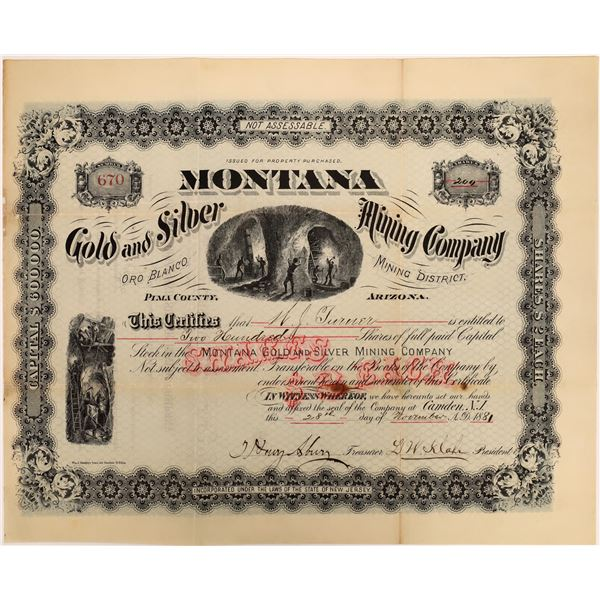 Montana Gold and Silver Mining Company Stock  [135803]