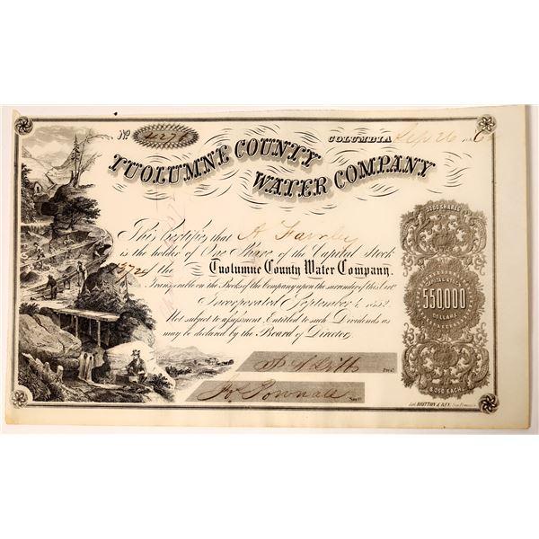 Tuolumne County Water Company Stock  [135786]