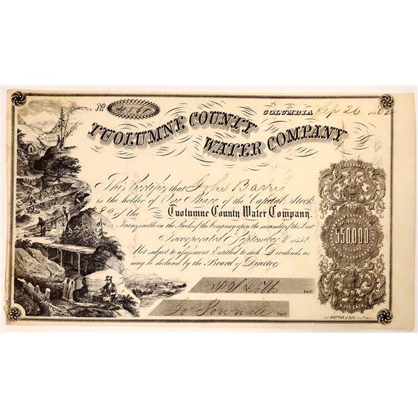 Tuolumne County Water Company Stock  [135788]