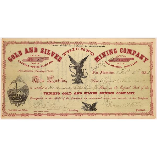 Stock Certificate for the Triunfo Gold and Silver Mining Company  [131557]