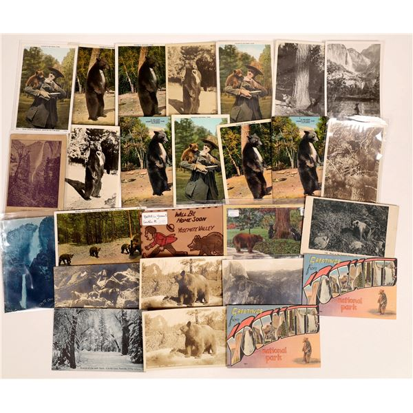 Yosemite Bear Postcard Collection  [132562]