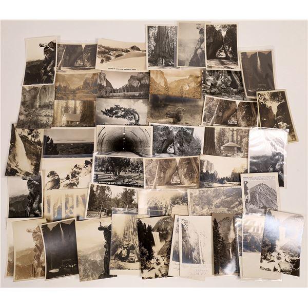 Yosemite Real Photo Postcards  [132565]