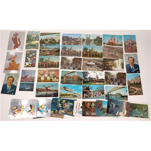 Modern Southern California Amusement Parks (approx 50 pieces) Post Card Collection  [137979]