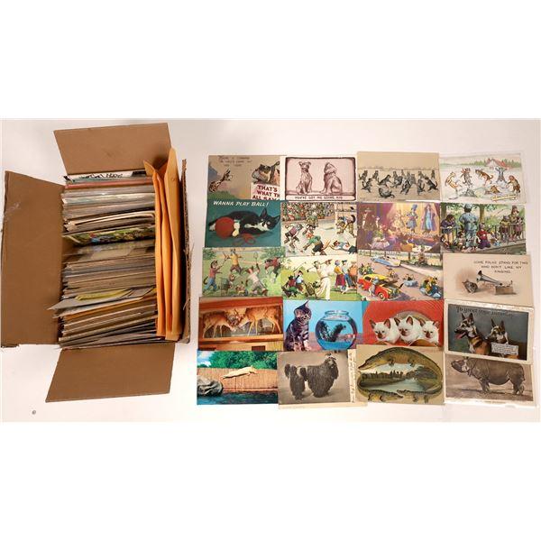 Cute & Cuddly, Wild & Wooly Animal Postcards ~ 350  [138800]