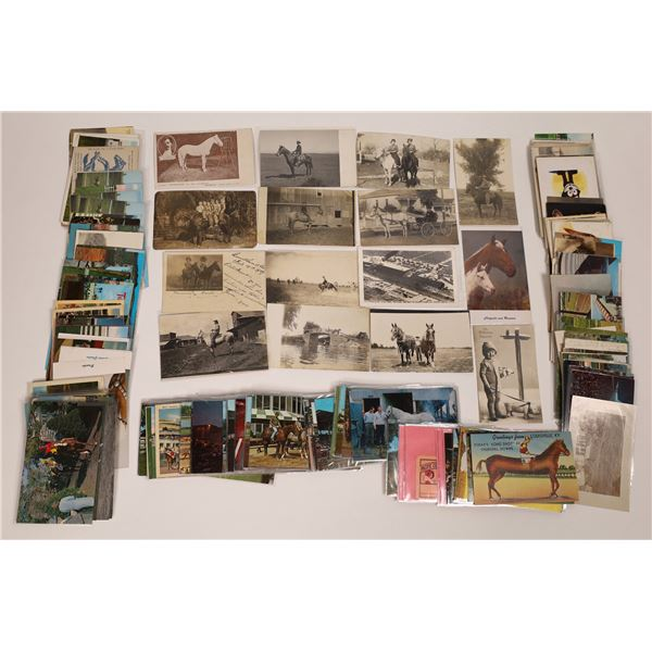 Horses and Horse Racing Postcards ~ 150  [138803]