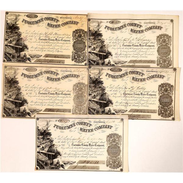Tuolumne County Water Company Important Investors Stock Certificates  [136857]