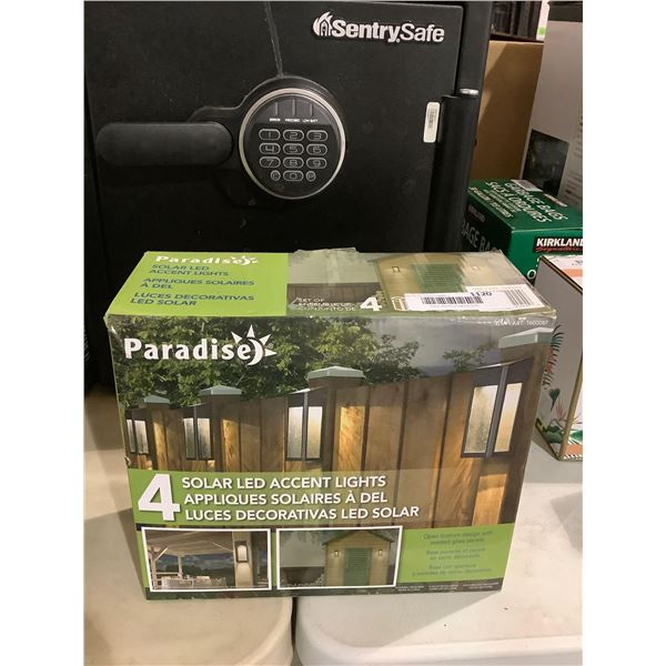 Paradise 4 Solar LED Accent Lights