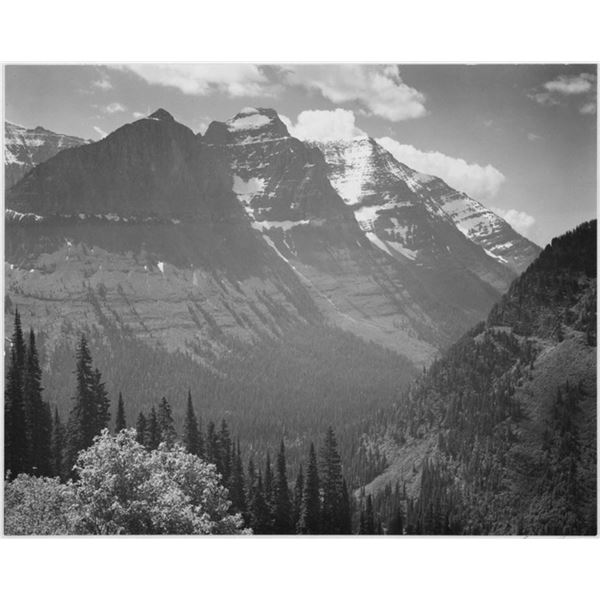 Adams - Glacier National Park Montana 2