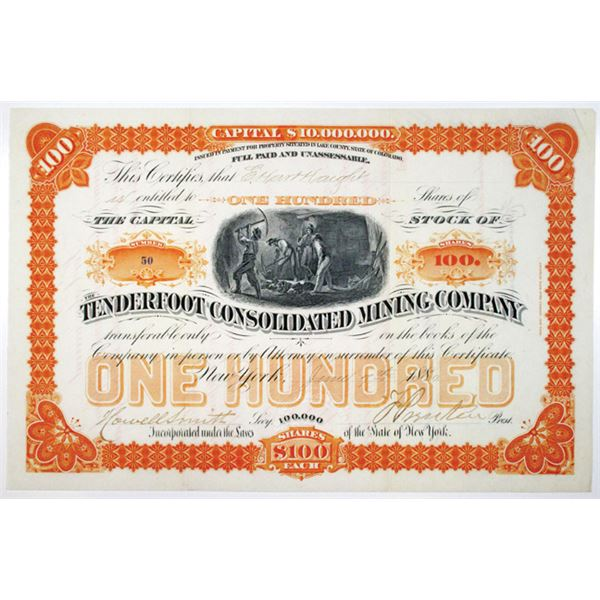 Tenderfoot Consolidated Mining Co. 1880 I/U Stock Certificate