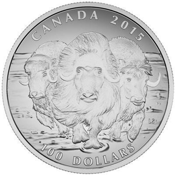 RCM 100.00 Fine Silver Muskox (.9999). SOLD  OUT.