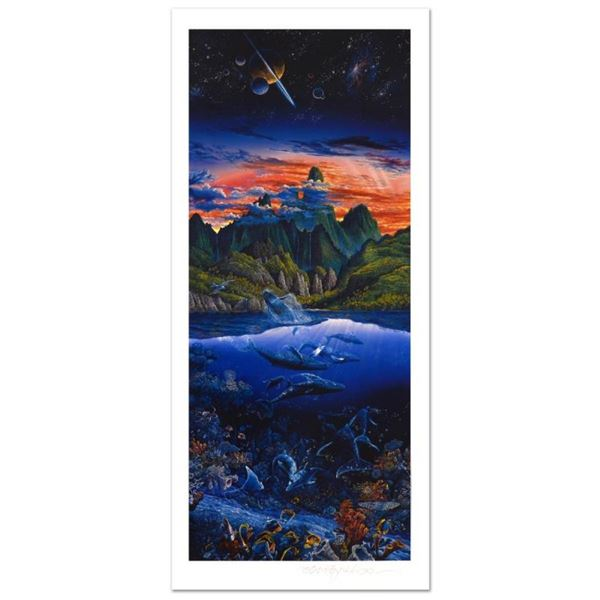 Oasis by Nelson, Robert Lyn