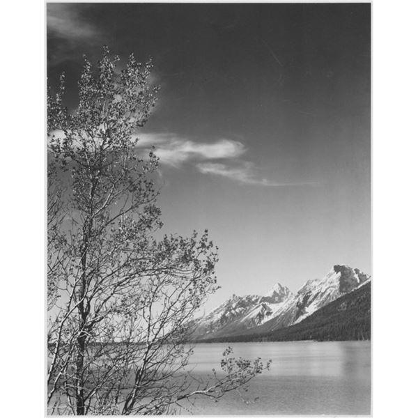 Adams - Grand Teton Wyoming