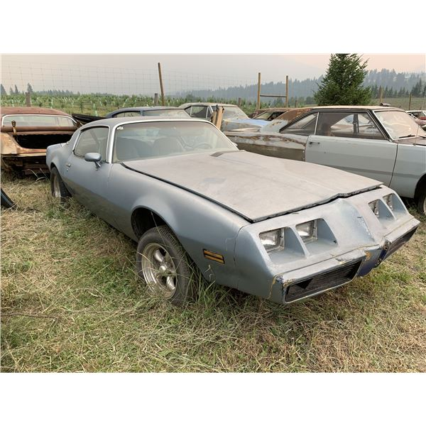 1980 Pontiac Turbo Firebird - no motor, 4 spd setup, has transmission, solid car