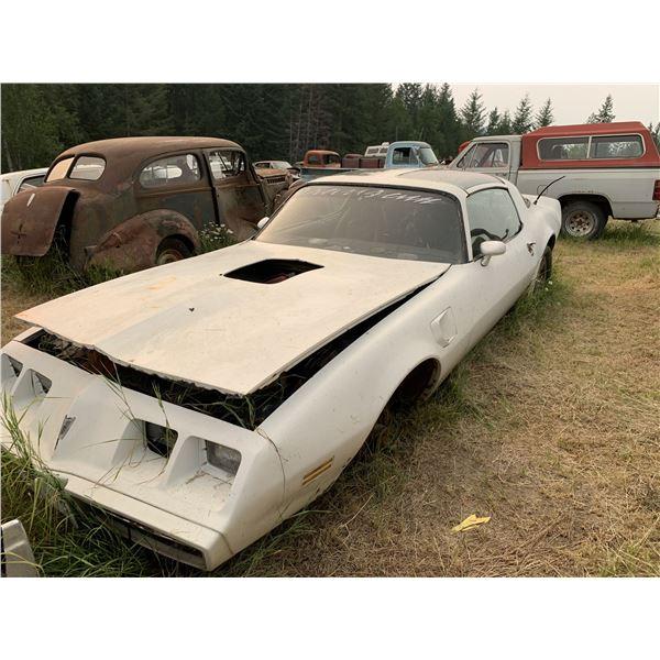 1981 Pontiac TransAm - parts or restore