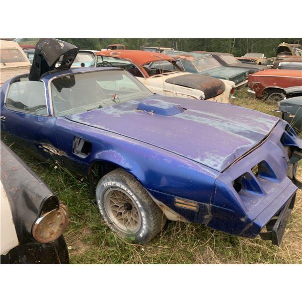 1981 Pontiac TransAm - parts car, shaker hood