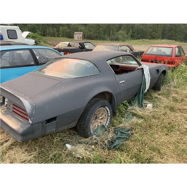 1976 Pontiac TransAm - 400 car, good project