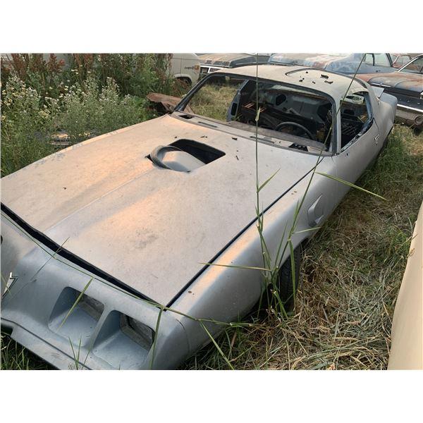 1981 Pontiac Trans Am - parts or restore, nice project